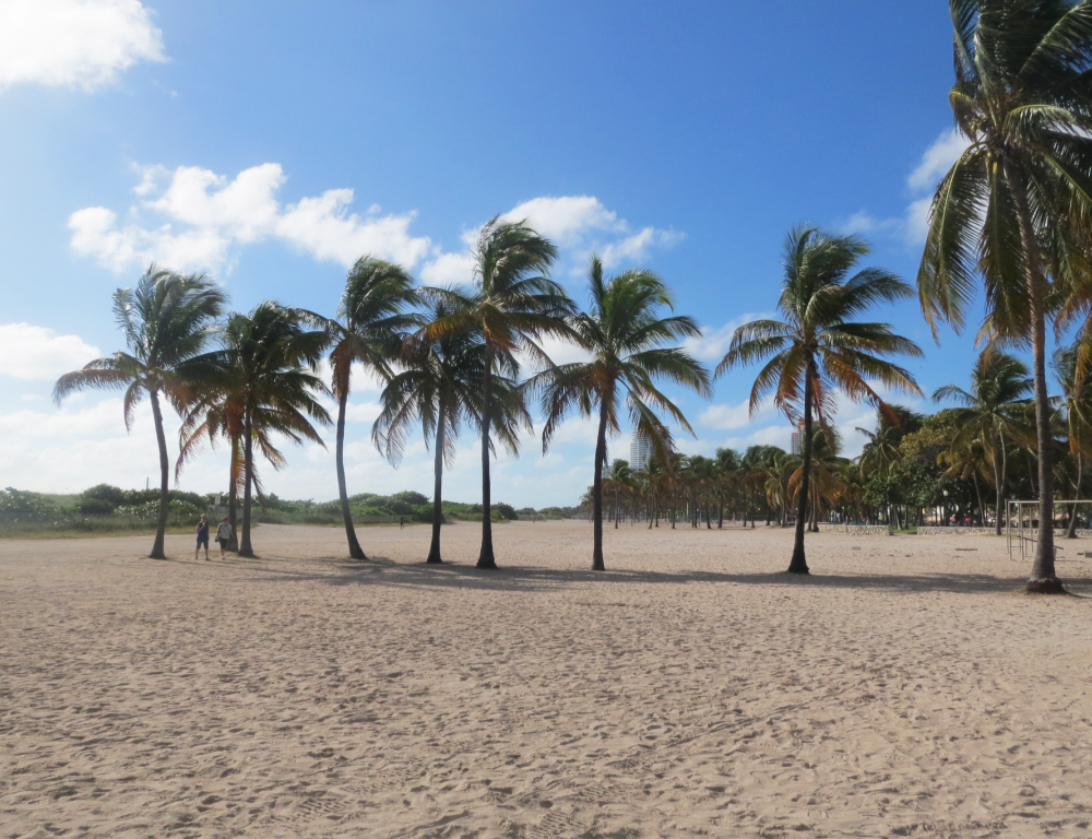 miami-beach-carnet-de-shopping_6