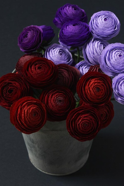 diy-project-paper-ranunculus
