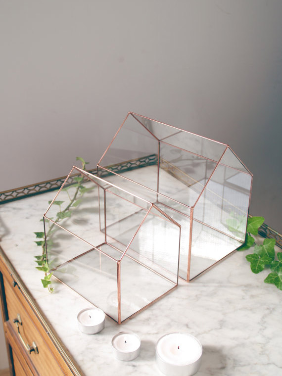 Terrarium géométrique en verre, Alexa Workshop