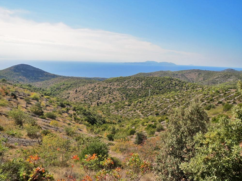 Île de Hvar - Croatie